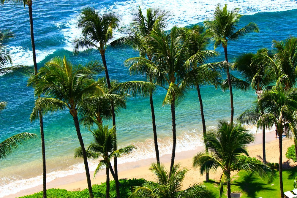 Consciousness & Healing Intensive Retreat in MAUI